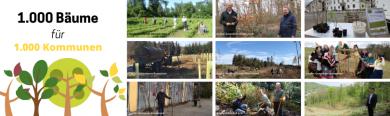 Unsere Kommunen in Aktion: Dargestellt sind neun unterschiedliche kommunale Pflanzaktionen. Auf den Bildern sind frisch gepflanzte oder zu pflanzende Bäume an unterschiedlichen Standorten (wie beispielsweise Wälder) zu sehen. Teilweise posieren Personen im Rahmen der Pflanzungen.